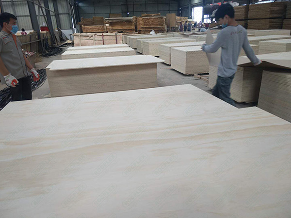 Commercial Plywood7